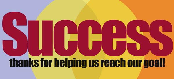 successfu Fundraising 2013