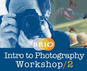 brio's photography workshop/2