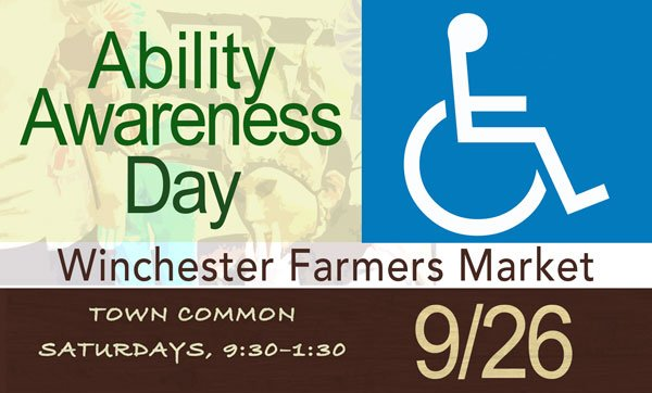 Ability awareness day