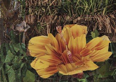 jw-flowers